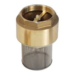 Image for Brass Spring Check Valve c/w strainer