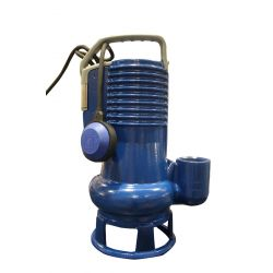 DG Blue Professional sewage pump