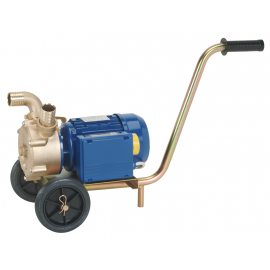 EP Bronze self-priming transfer pump complete with Trolley
