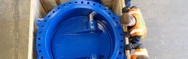 Custom Check Valves for Water Desalination Facilities in Dubai